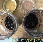 BlueberryJars-2