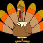 Turkey_color-01